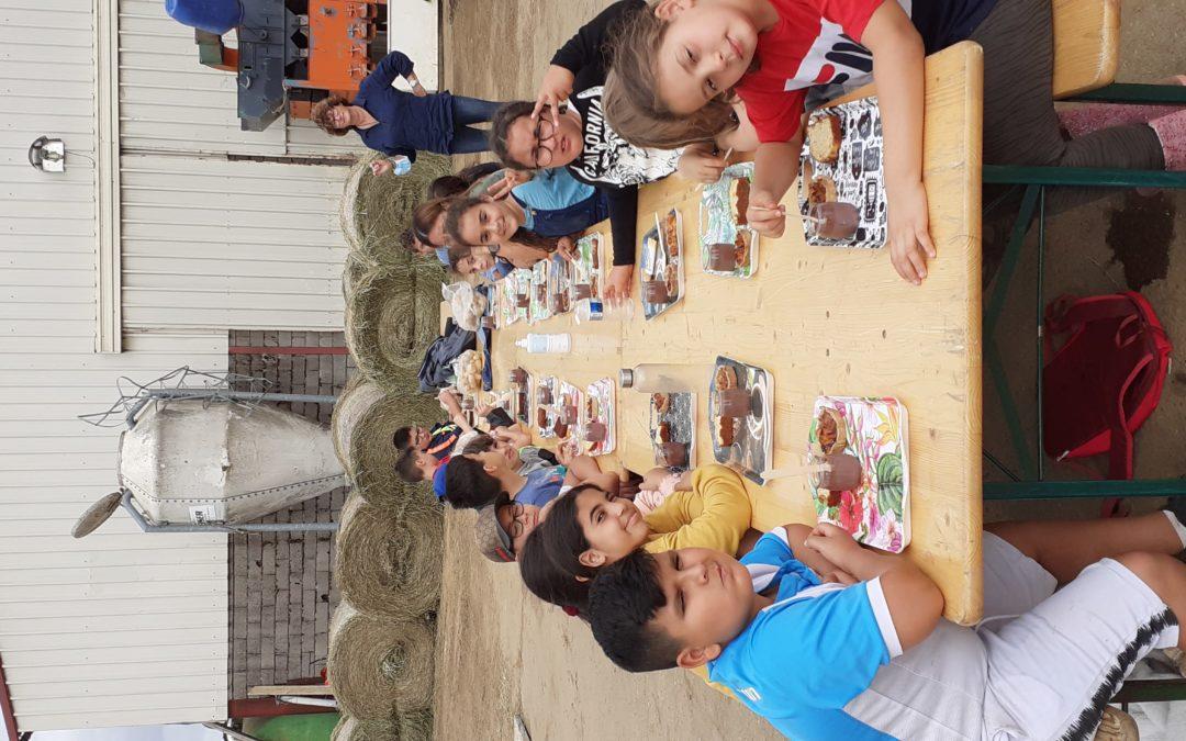 Visite à la ferme pédagogique Schmitt